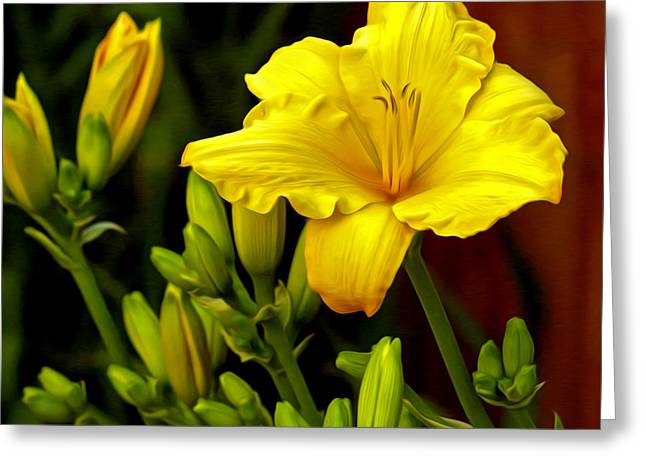 Yellow Daylily Greeting Card by James Steele