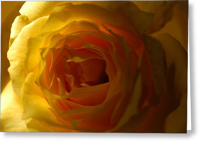 Yellow Delight Greeting Card by Wanda Brandon