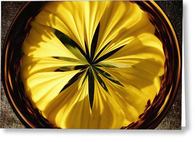 Yellow Flower Greeting Card by Skip Nall