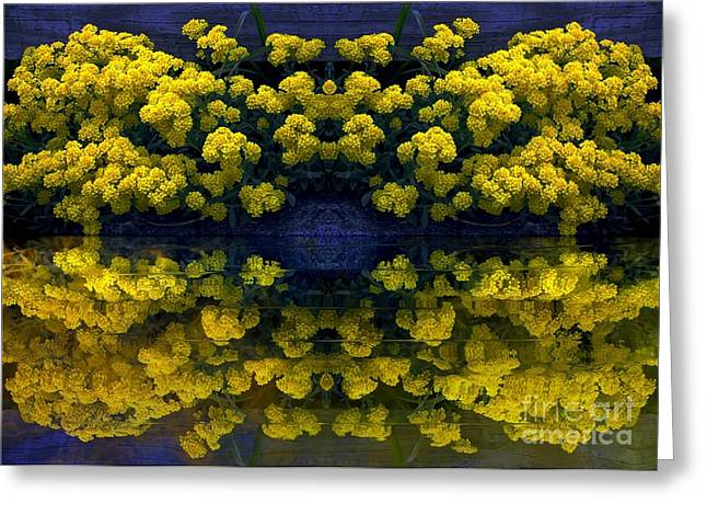 Yellow Flowers Greeting Card by Dale   Ford