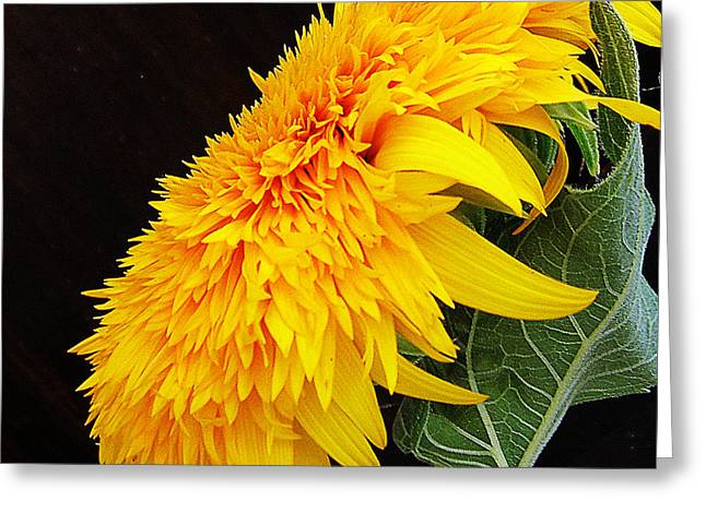Greeting Card featuring the photograph Yellow Flowers by Elvira Ladocki