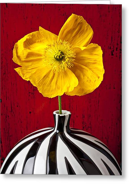 Yellow Iceland Poppy Greeting Card by Garry Gay