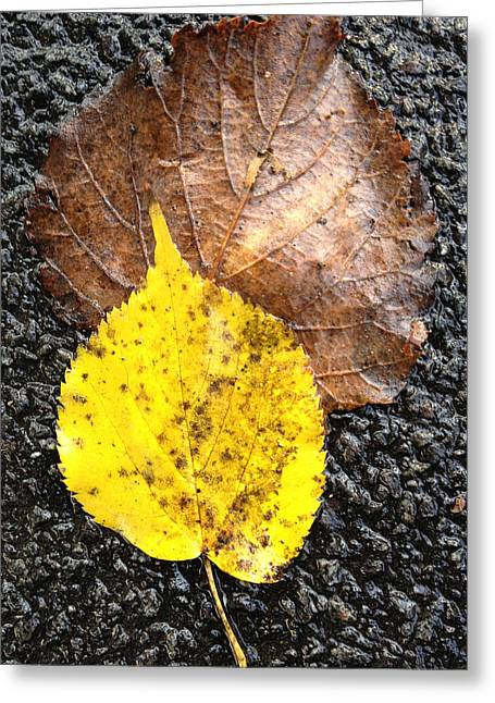 Yellow Leaf In Rain Greeting Card