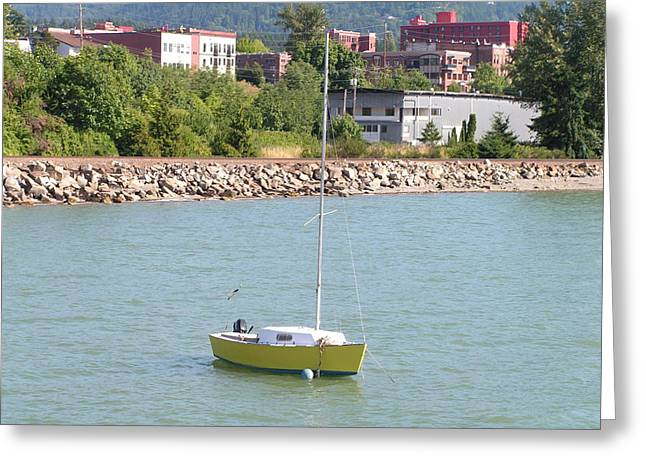 Greeting Card featuring the photograph Yellow Sailboat At Bellingham Bay by Rand Swift