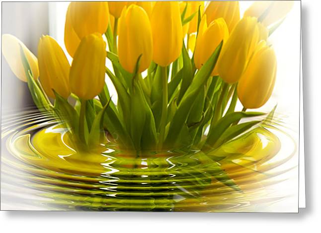 Yellow Tulips Greeting Card by Trudy Wilkerson