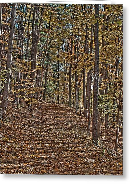 Yellow Wood Four Greeting Card by Joshua House