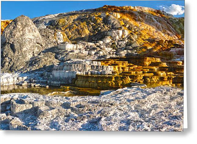 Yellowstone National Park - Mammoth Hot Springs - Panorama Greeting Card by Gregory Dyer
