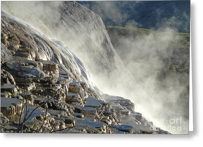 Yellowstone National Park - Minerva Terrace - Steam Greeting Card by Gregory Dyer