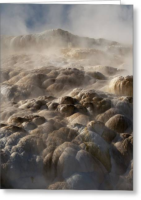 Greeting Card featuring the photograph Yellowstone Steam by J L Woody Wooden