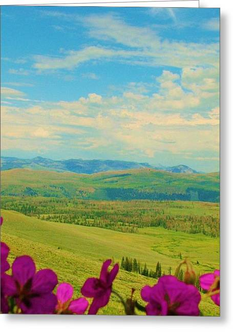 Yellowstone Valley Greeting Card by Virginia Lei Jimenez
