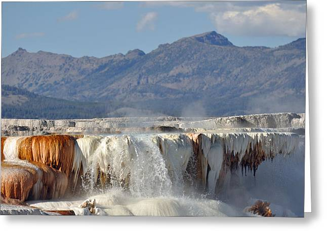 Yellowstone's Canary Springs 002 Greeting Card by Bruce Gourley