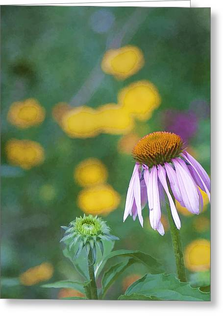 Greeting Card featuring the photograph Yet Another Flower by John Crothers