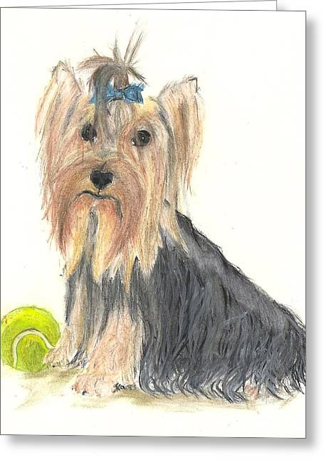 Yorkie Indy At Play Greeting Card by Jessica Raines