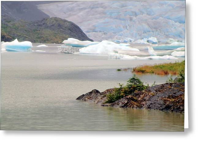 You Won't Believe Mendenhall Glacier Greeting Card by Mindy Newman