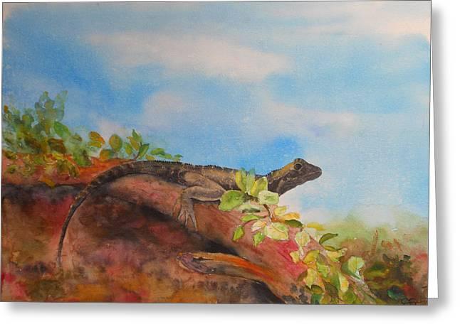 Young Australian Water Dragon Greeting Card by Carol McLagan