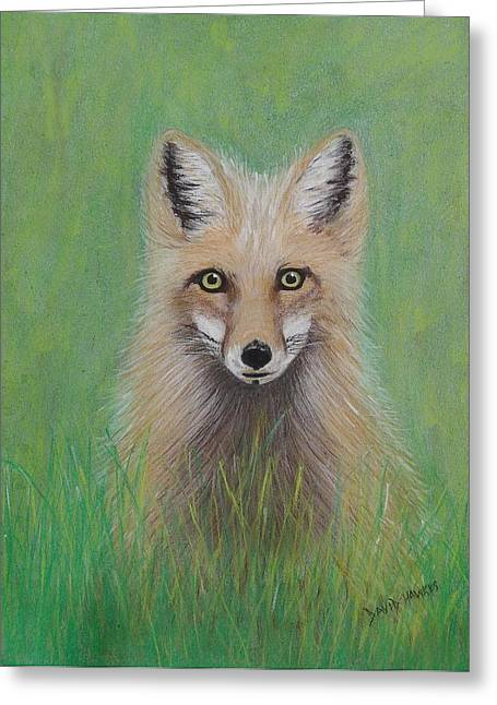 Young Fox Greeting Card by David Hawkes