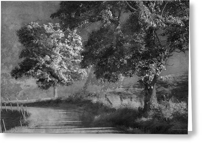 Young Hollow Road Greeting Card by Ron Jones