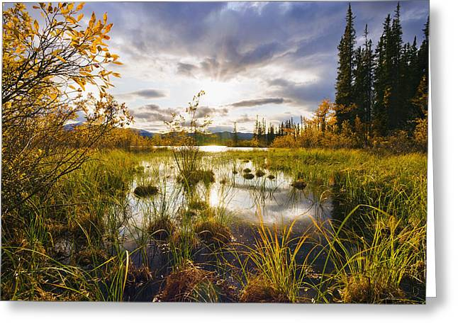 Yukon River And Fall Colours At Sunset Greeting Card