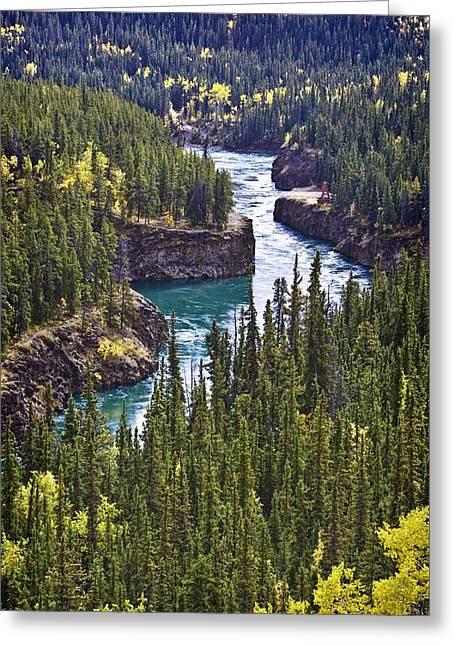 Yukon Territory, Canada Greeting Card by Richard Wear