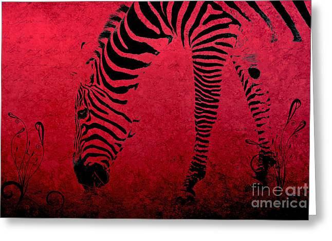 Zebra On Red Greeting Card by Aimelle