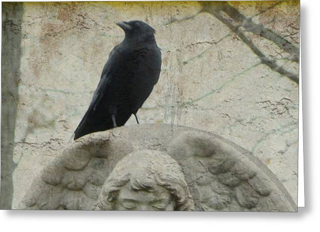 Zen Crow On Stone Angel Greeting Card by Gothicrow Images
