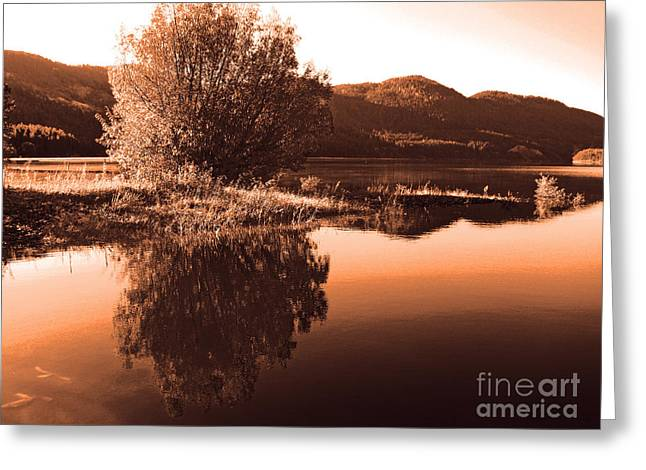 Zen Moment Greeting Card by Greg Patzer