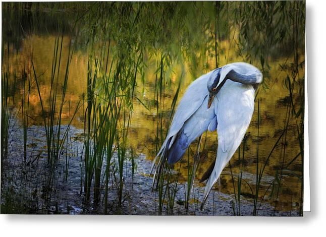 Zen Pond Greeting Card by Melinda Hughes-Berland