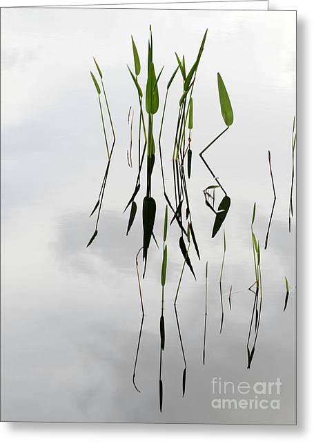 Zen Greeting Card by Sabrina L Ryan