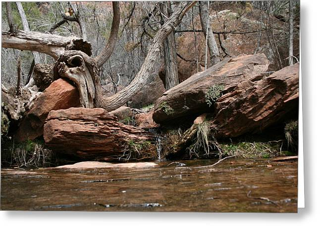Zion Park Greeting Card