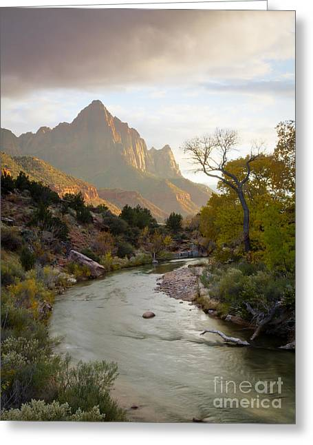 Zion View Greeting Card by Idaho Scenic Images Linda Lantzy