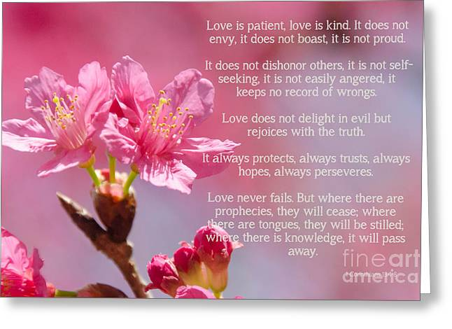 1 Corinthians 13 Love Is Greeting Card by Andrea Anderegg
