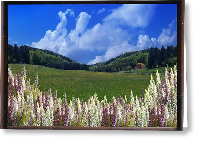 Greeting Card featuring the photograph  A Beautiful View by Bernd Hau