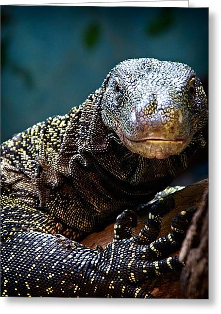Greeting Card featuring the photograph  A Crocodile Monitor Portrait by Lana Trussell