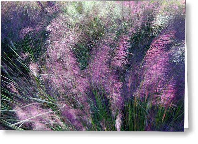 Greeting Card featuring the photograph  A Gentle Breeze  by Gerlinde Keating - Galleria GK Keating Associates Inc