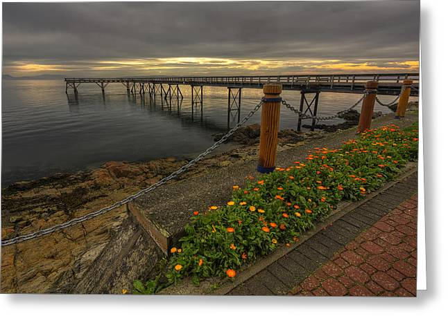 Bevan Fishing Pier - Sydney Bc Greeting Card