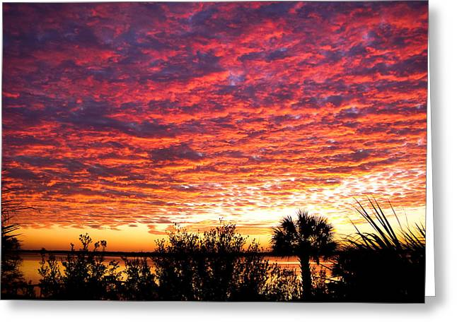 Blanket From Heaven Greeting Card by Karen Wiles