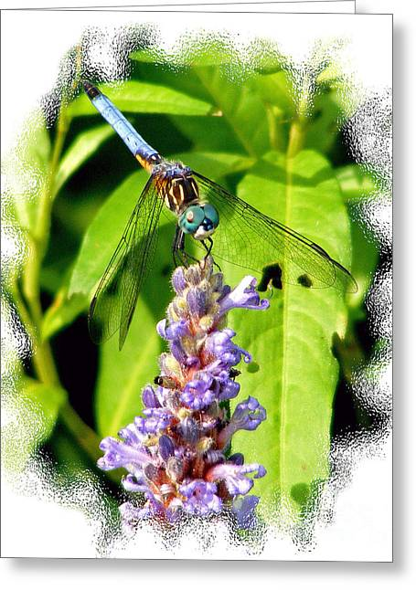 Greeting Card featuring the photograph  Blue Dragonfly by Lila Fisher-Wenzel