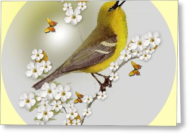 Blue Winged Warbler Greeting Card by Madeline  Allen - SmudgeArt
