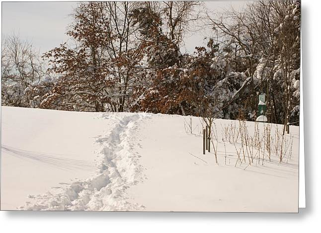 Greeting Card featuring the photograph  Christmas Snow Trail by Heidi Poulin