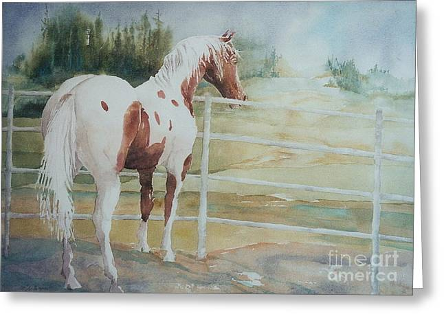 Contemplating Freedom Greeting Card by Maryann Schigur