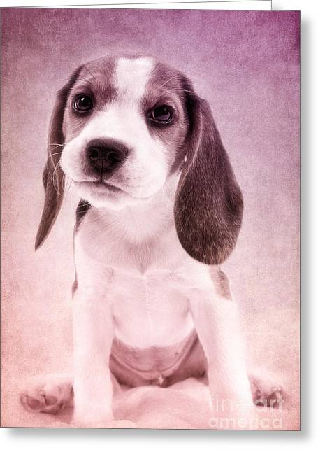 Cute Luna Greeting Card by Angela Doelling AD DESIGN Photo and PhotoArt