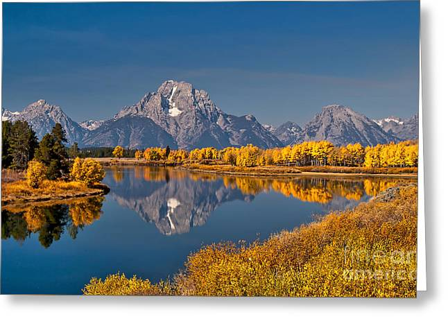 Fall Colors At Oxbow Bend In Grand Teton National Park Greeting Card