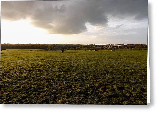 Fields Of Limburg Greeting Card