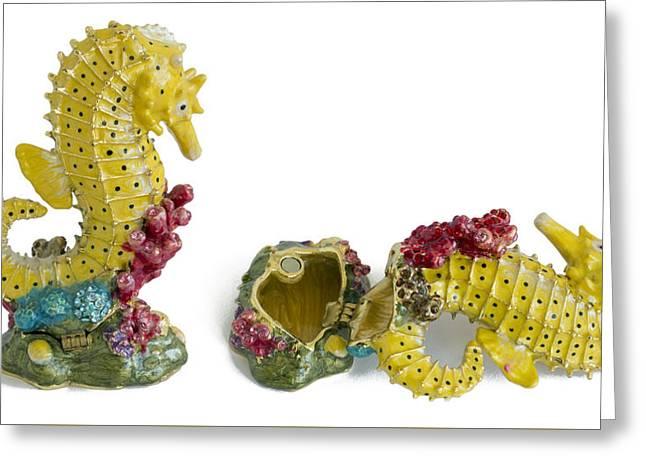 Fish Sea Horse - Metal  Box For Jewelry Greeting Card by Aleksandr Volkov
