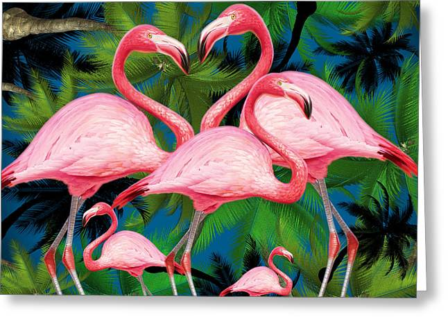 Flamingo Greeting Card by Mark Ashkenazi