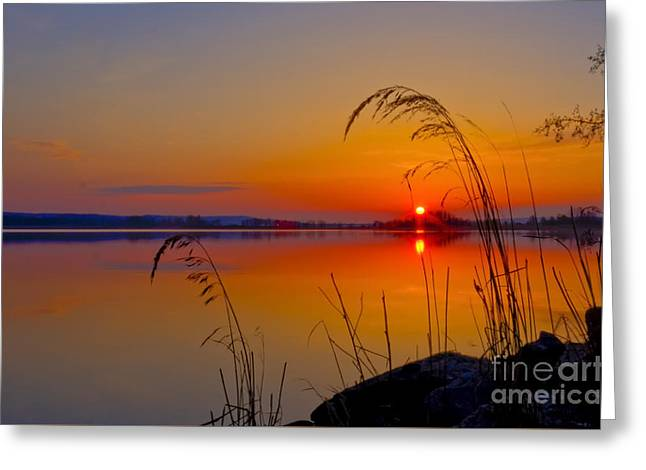 In The Morning At 4.04 Greeting Card by Veikko Suikkanen