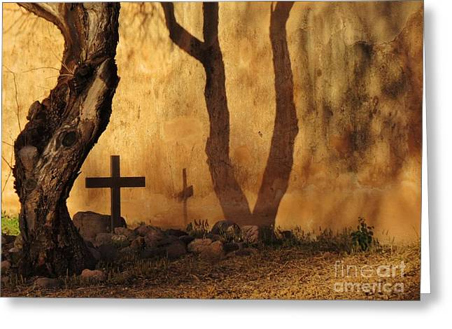 Shadow Of The Past Greeting Card by Feva Fotos