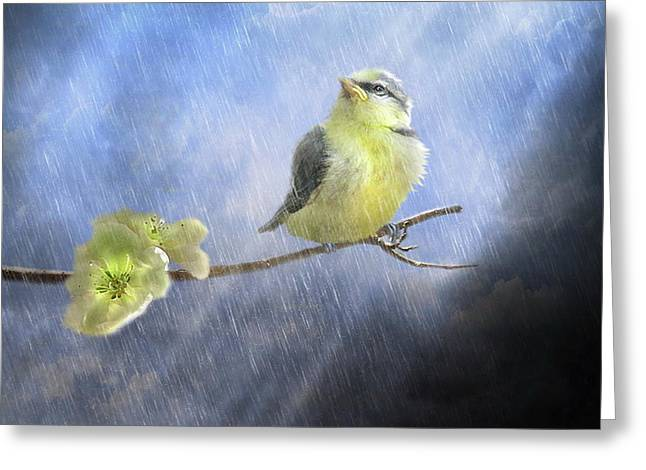 Little Sunshowers Greeting Card by Trudi Simmonds