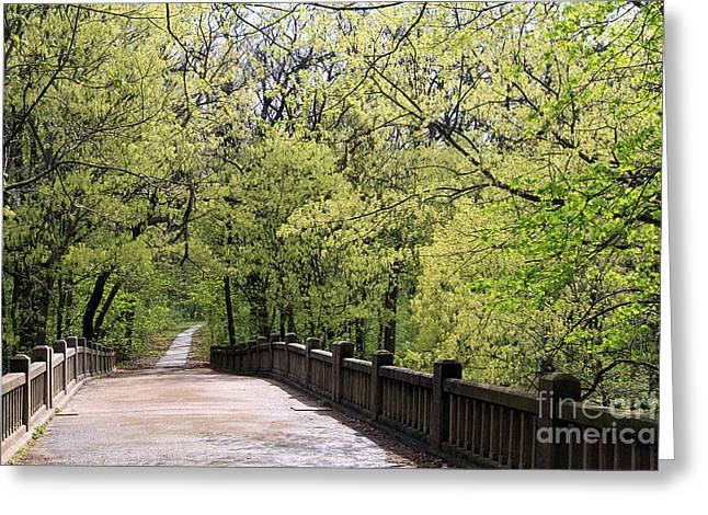 Matthiessen State Park In Spring Greeting Card by Paula Guttilla