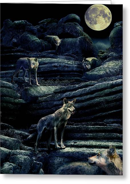 Moonlit Wolf Pack Greeting Card by Mal Bray
